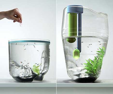 acquario-giardino