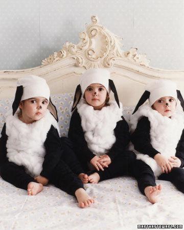 costumi-carnevale-pecora